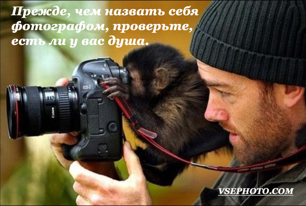 Funny-Animals-With-Cameras_87