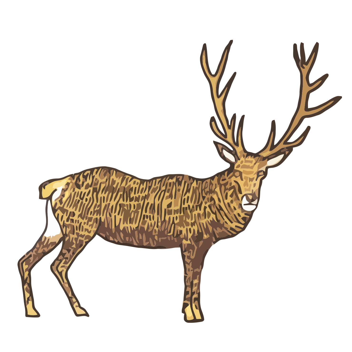 Polish - Noble deer - art, draw, drawings, vectorized, vector, image, artwork, paints